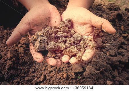 Pool Soil Very Hard In The Human Hand Holding.