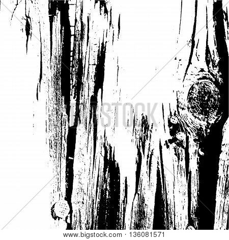 Tree Texture. Tree Background. Tree Effect. Tree Overlay. Grunge Black and White Distress Texture. Scratch Texture. Dirty Texture. Wall Background. Vector Illustration.