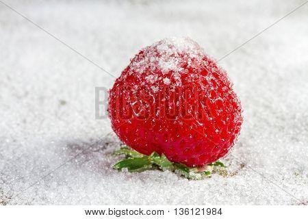 Ripe strawberry in sugar closeup