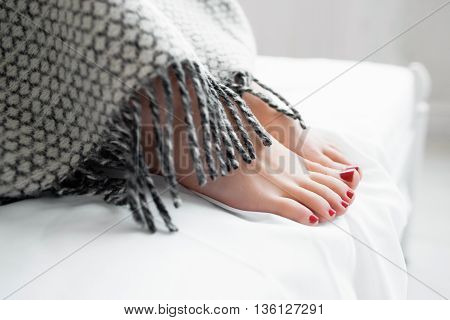 Female reams under warm gray blanket. Beautiful womans feet covered with gray blanket on bed. Close-up of covered female feet with red pedicure