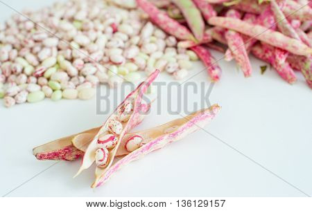 Cranberry Bean Pods And Seeds Heap