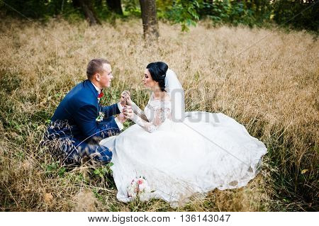 Wedding couple in high dry grass outdoor