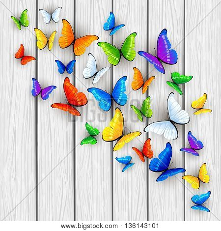 Set of multicolored butterflies on white wooden background, illustration.