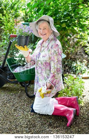 Cheerful senior woman holding potted plant while kneeling in garden