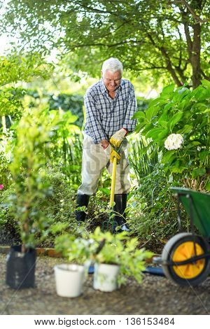 Senior man using rake amidst plants in garden