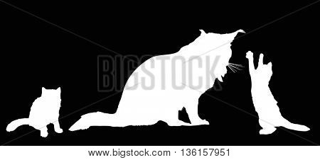 illustration with cat silhouettes isolated on black background