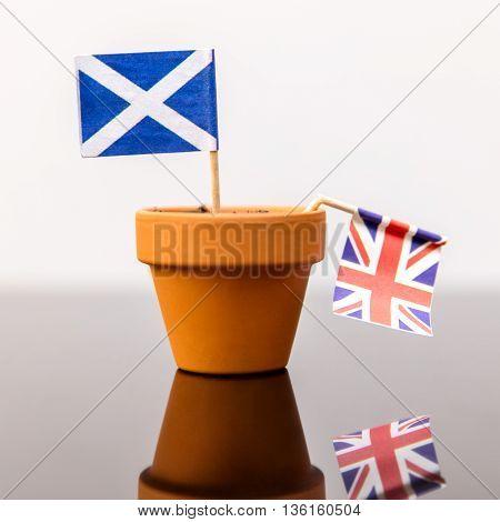 Plant Pot With Scottish And British Flag