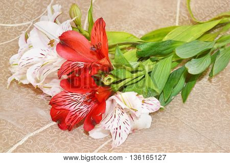 bouquet of Alstromerias flowers on brown background