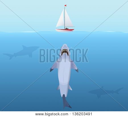 Hungry Shark with big jaw Attack yacht sheep from the water