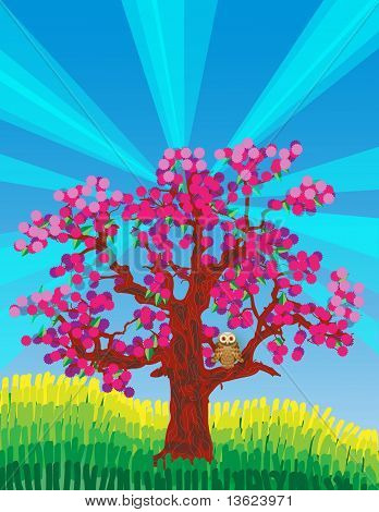 Pink blossom tree with owl and sunshine rays poster