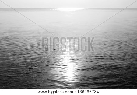 Ladoga lake at sunny day the Karelian Isthmus. Black and white.