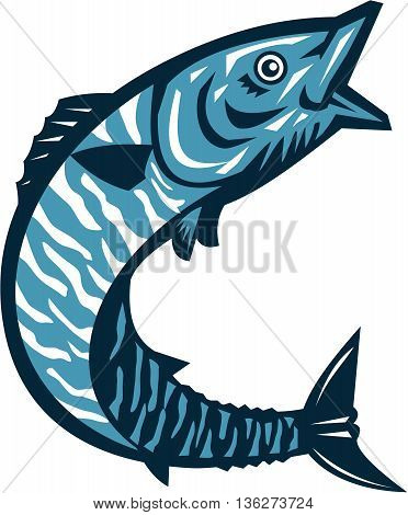 Illustration of a wahoo Acanthocybium solandri a scombrid fish jumping up viewed from the side set on isolated white background done in retro style.