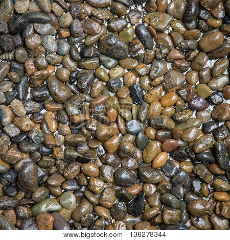 Close up River Stone on Background with copy space