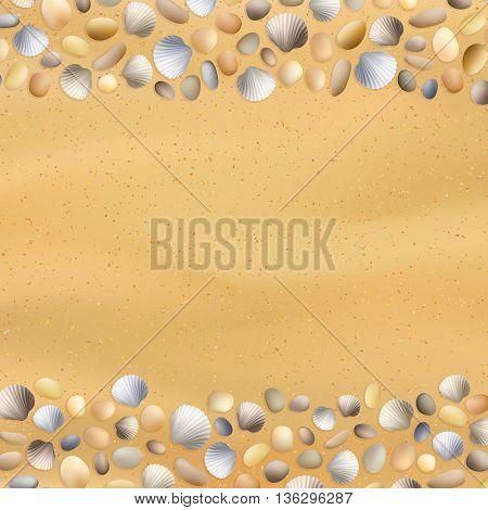 Shells Sand Seashore Background