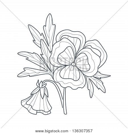 Pansy Flower Monochrome Drawing For Coloring Book Hand Drawn Vector Simple Style Illustration