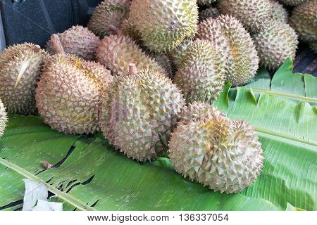 Group of durian in the market,  dessert, market