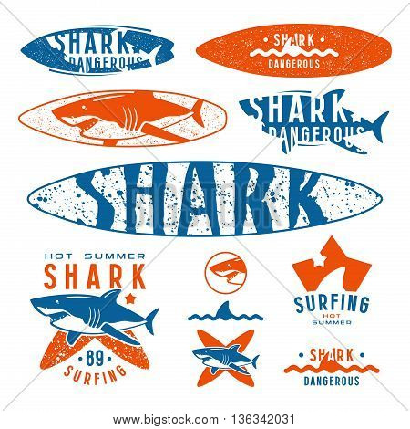 Graphic design with the image of shark for surfboard t-shirt and design elements. Color print on white background