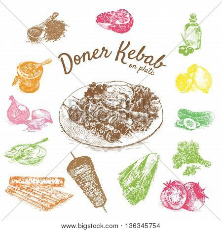 Vector illustration of doner kebab ingredients. Hand drawn colorful illustration on white background