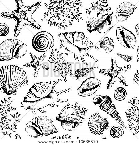 Seamless black-white pattern with seashells corals and starfishes. Hand drawn vector illustration in sketch style. Perfect for greetings, invitations, coloring book, textile, wedding and web design.
