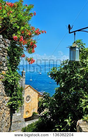 Portovenere view on the mediterranean sea and red flowers