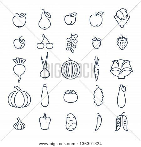 Farm fruits and vegetables flat thin line vector icons set. Organic healthy food linear symbols. Harvest infographic elements. Agriculture design elements. Apple, tomato, pepper, cherry, berries etc.
