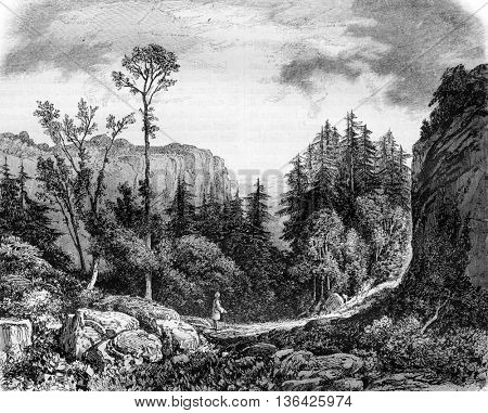 The Desert of JJ Rousseau, vintage engraved illustration. Magasin Pittoresque 1861.