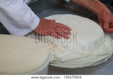 Hands Of An Old And Expert Cheesemaker
