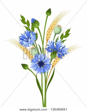 Vector bouquet of blue cornflowers and ears of wheat isolated on a white background.