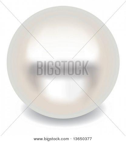 Realistic vector pearl.
