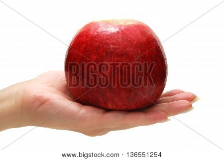 Female Hand Holding Apple Isolated on White Background