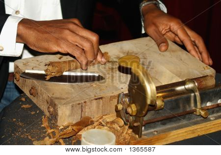Making Cigar