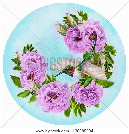 Little bird hummingbird and a branch of flowering lilac pink purple roses in a circle. Painting. Round form.