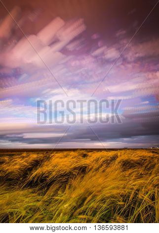 timelapse movement of clouds across marshland and grasses in sunlight