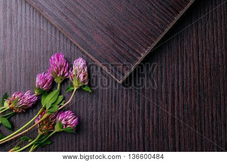 Topview Of Laminated Particleboard With Clover Flowers. Flat-lay