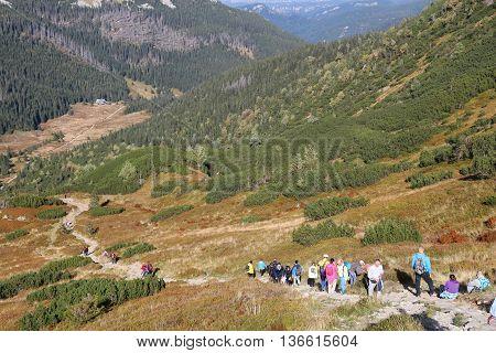 Mountain Trail In Poland
