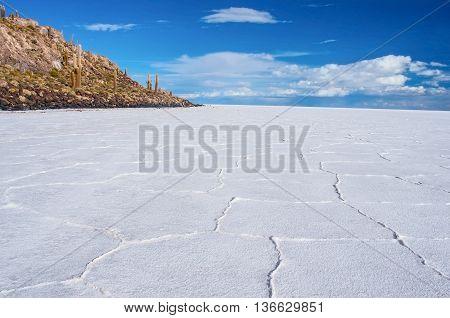 Incahuasi Island In Salar De Uyuni, Bolivia