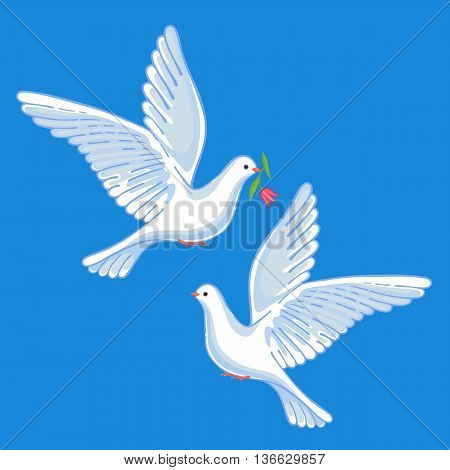 Soaring doves with flower vector illustration isolated on background