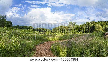 Scene In The German Hills Of The Eifel Area Near Steinborn