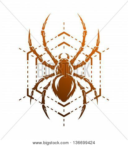 Spider and spider web in the form of a geometric figure. Symbol insect.