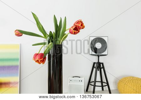 Bright Space Inhabited By Sensitive Music Maker
