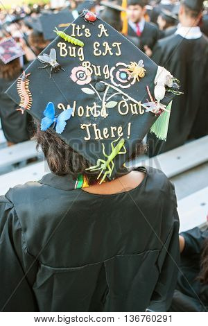 ATHENS, GA - MAY 2016: A University of Georgia graduate wears a mortarboard covered with plastic insects and a message that says