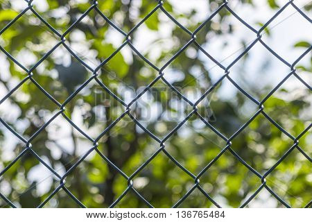 Metal net with green bluried background abstract