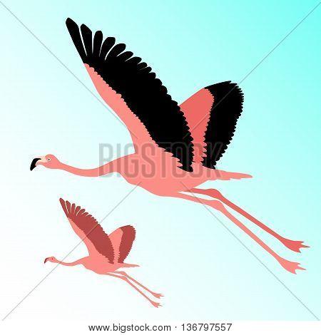 Pink flamingo bird flying silhouette vector illustration