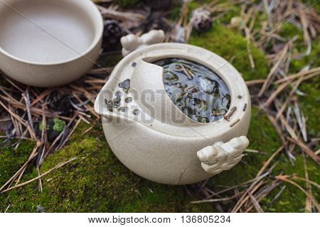 Tea Set On The Ground In The Forest