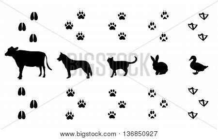 Vector set of walking farm animal tracks