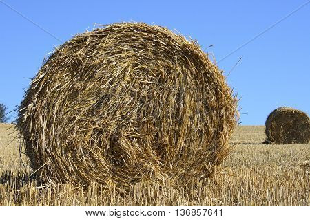 Large round straw roll with blue sky in background