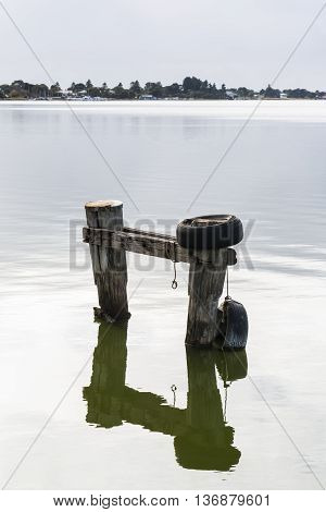 Boat mooring posts and reflection again the still water of the Murray River Goolwa South Australia. Part of the Fleurieu Peninsula. Portrait Orientation