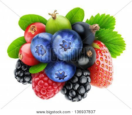 Various Isolated Berries