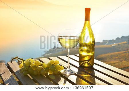 Wine and grapes. Lavaux, Switzerland