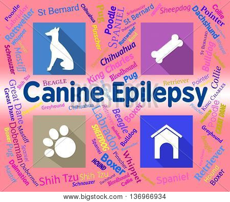 Canine Epilepsy Means Dog And Puppies Fits
